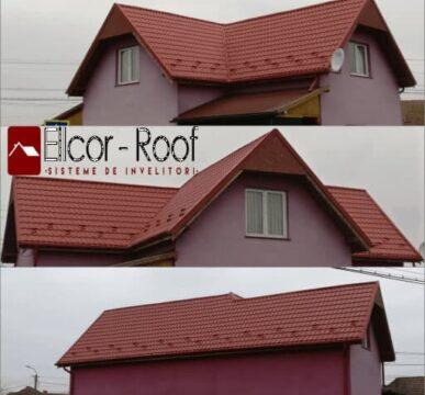 lucrari de portofoliu ellcor roof